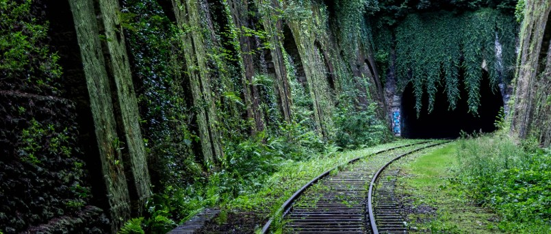 train tracks entering a mossy cave